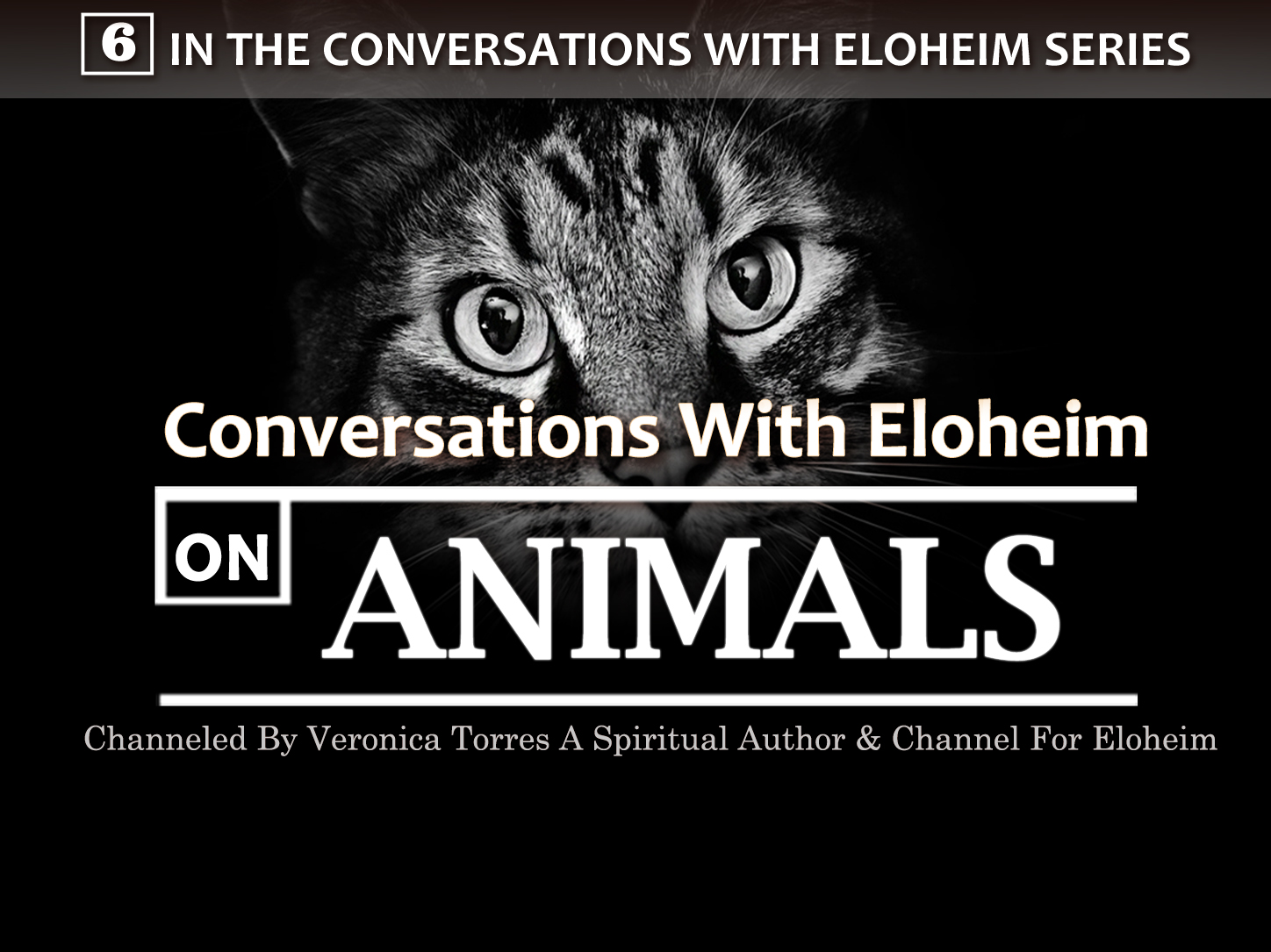 Conversation with Eloheim on Animals