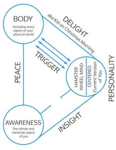 body-personality-awareness