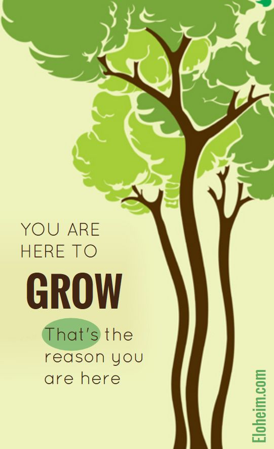 here to grow